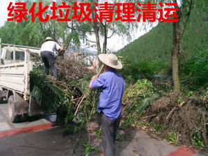 綠化垃圾清理清運